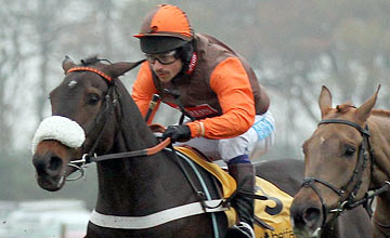 Long Run, Haydock 19/11/11
