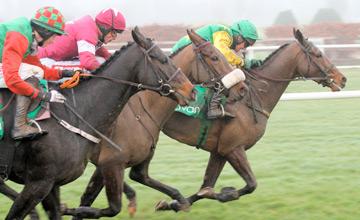 Busty Brown - Navan - 25/11/2012