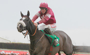 Don Cossack - Navan - 25/11/2012