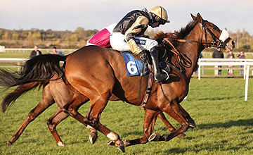 Tidal Bay - Wetherby - 03.11.12