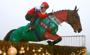 Tony McCoy - Christmas jumper