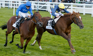 Mince (far side) beats Soul - Ascot - 6.10.12