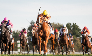 Wise Dan (#5, Wiseman's Ferry) wins the Shadwell Turf Mile (G1) at Keeneland on 10.06.2012. Jose Lezcano up, Charles Lopresti trainer, Morton Fink owner