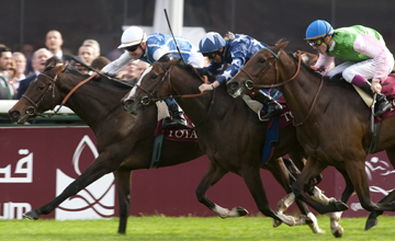 Silasol - Longchamp - 7/10/2012