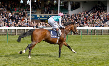 Frankel Newmarket 29/9/2012