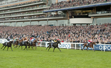 Maarek Ascot 20.10.12