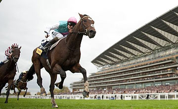 Frankel wins the Champion Stakes to end an unforgettable career