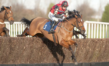 The winner Pacha du Polder - Warwick - 26.1.12