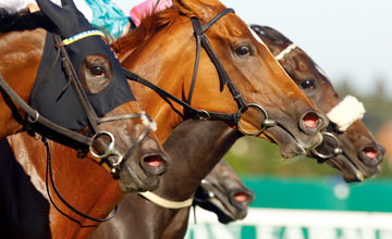 Chachamaidee, Duntle - Leopardstown 08.09.2012
