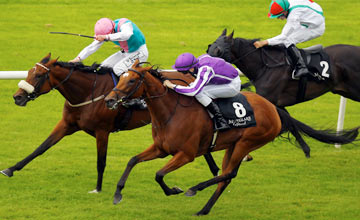 Up, The Curragh 09.09.2012