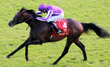 Camelot, The Curragh 30.06.2012