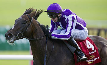 Camelot - Joseph O'Brien - 2012