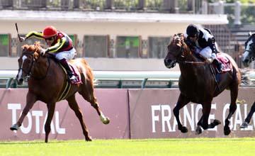 Orfevre - Longchamp - 16/09/2012
