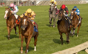Odds-on favourite Wise Dan runs away with the $1 million Woodbine Mile