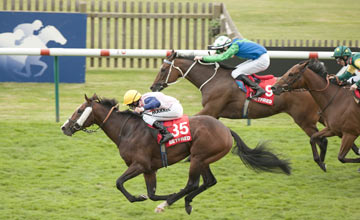 Bronze Angel wins the Cambridgeshire Newmarket 29.9.12