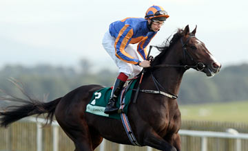 Battle Of Marengo, The Curragh 30.09.2012