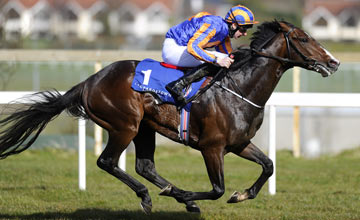 Battle Of Marengo - Leopardstown 14.04.2013