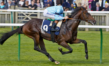 Telescope: faces a race against time to be fit for the Derby next month
