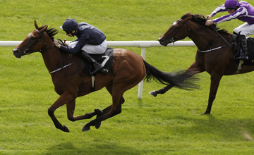 Tapestry - Curragh 11/08/2013