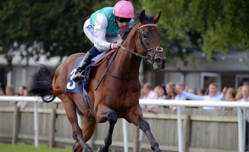 KINGMAN with R Moore wins Maiden Stakes at Newmarket 29-6-13. Copyright Martin Lynch.