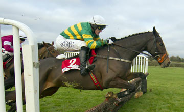 Jezki - Fairyhouse 1.12.13