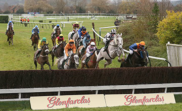 SIRE COLLONGES (Left Pink & Black) ridden by Ryan Mahon wins at Cheltenam 13/12/13