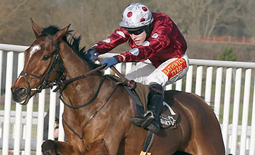 KINGS PALACE Ridden by Tom Scudamore wins at Cheltenham 14/12/13