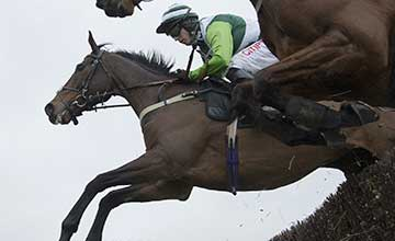 Rock On Ruby - Plumpton 16.12.13