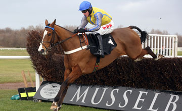 OVERTURN - Musselburgh 3/2/13