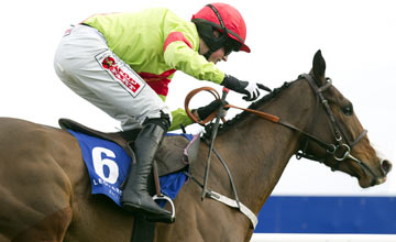 Our Conor, Leopardstown 09.02.2013