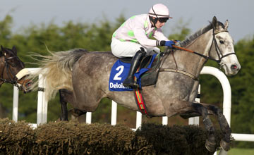 Champagne Fever Leopardstown 09.02.2013