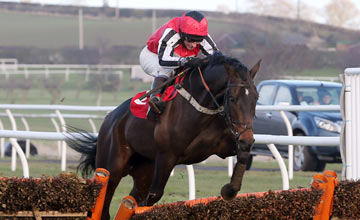 Duke Of Navan - Kelso 14.02.2013