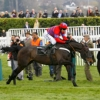 Sprinter Sacre Cheltenham Racing Post Arkle Challenge Trophy Chase