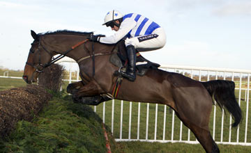 Call The Police - Thurles 03.01.13