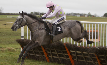 Noras Fancy - Thurles 17/01/2013