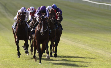 Joseph O'Brien winning on Darwin