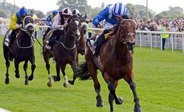 MUKHADRAM - Sky Bet York Stakes at York 27-7-13