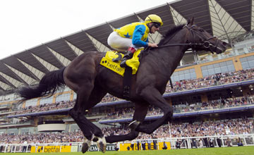 Novellist storms to big-race glory in the King George at Ascot in July
