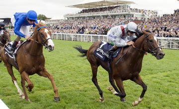 Toronado beats Dawn Approach Goodwood 31.7.13