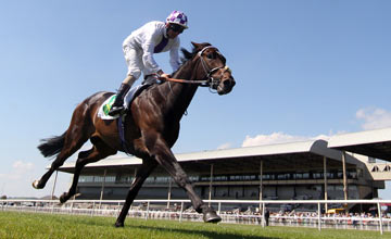 Trading Leather - The Curragh 09.06.2013