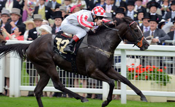 Sole Power - Royal Ascot 18.06.13