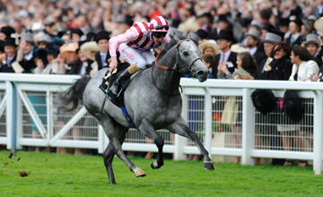 Lethal Force - Royal Ascot - 22.06.13