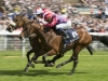 Top Trip near side will relish the extra six furlongs of the Gold Cup