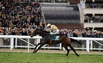 Briar Hill (far left) and Ruby Walsh 13.03.2013
