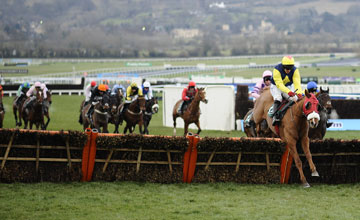 Flaxen Flare - Cheltenham 13.3.13