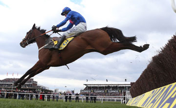 Cue-card-14/3/13