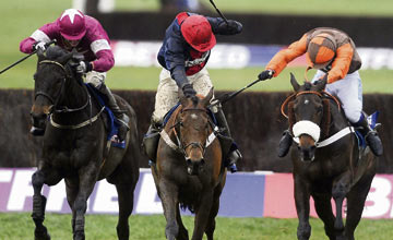 Sir Des Champs, Bobs Worth, Long Run - Cheltenham 15.03.13