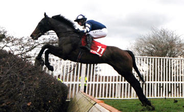 Big Occasion - Uttoxeter - 16.03.13