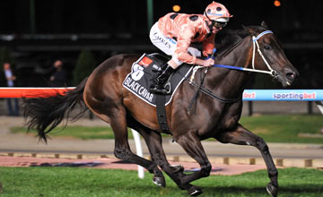 Luke Nolen riding Black Caviar