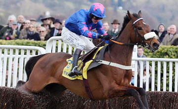 Cue Card: Ryanair hero on course to meet Sprinter Sacre and Flemenstar